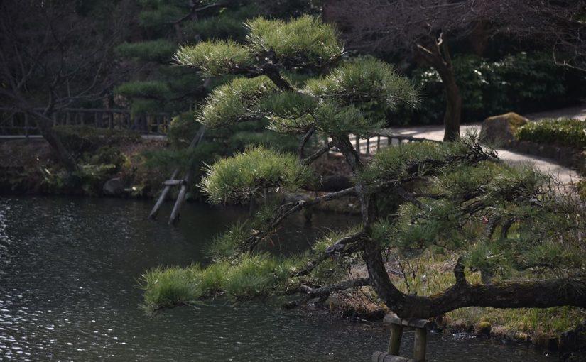 緑と水が気持ちいい植物園側 #東山動植物園 #東山80 #オジ旅PR