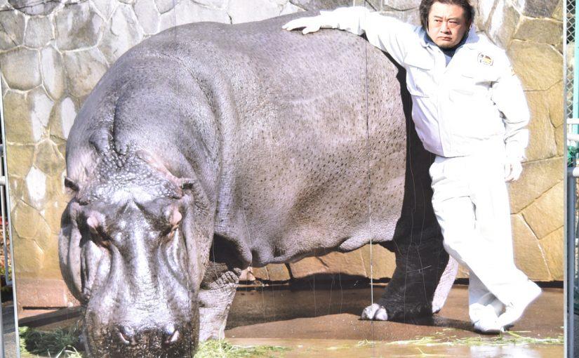「名古屋に名所はない」と聞きましたが、歴史の深い #東山動植物園 があるじゃないですか! #東山80 #オジ旅PR